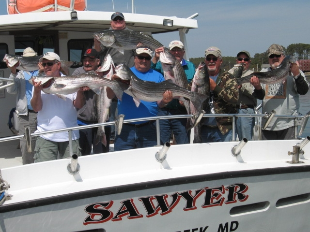 Chesapeake Bay Fishing For Striped Bass!